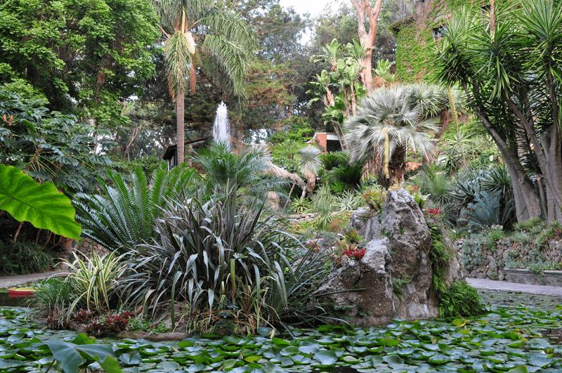 Ischia reasons to visit_La Mortella Gardens_Villa Italy