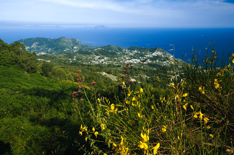 Ischia reasons to visit_Mount Epomeo_Villy Italy