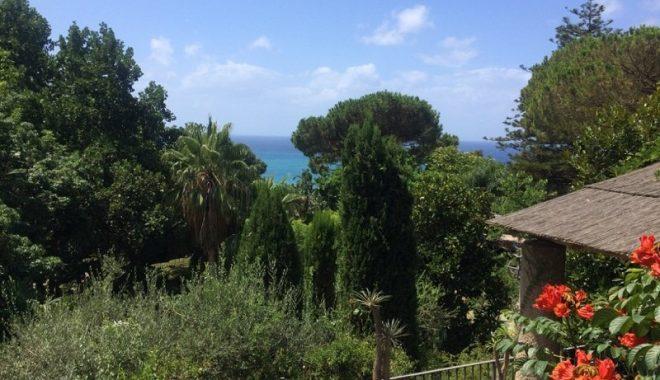 La Mortella Gardens_Ischia- Villa Italy