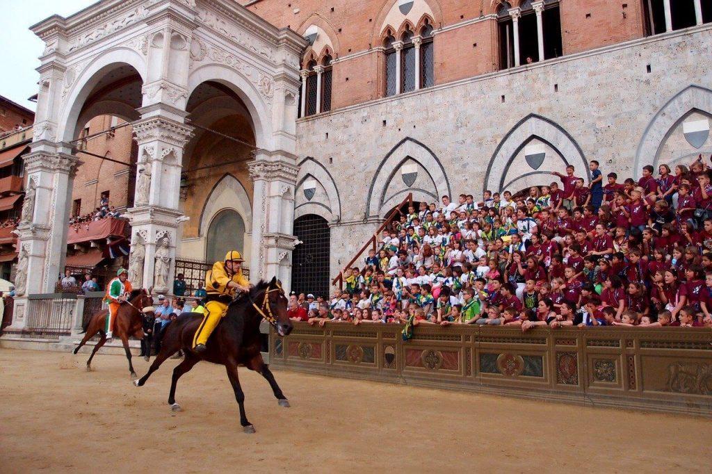 Siena Italy Horse