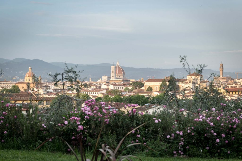 Views over Florence